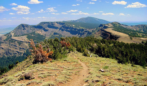 Modoc County: Modoc National Forest Summit Trail